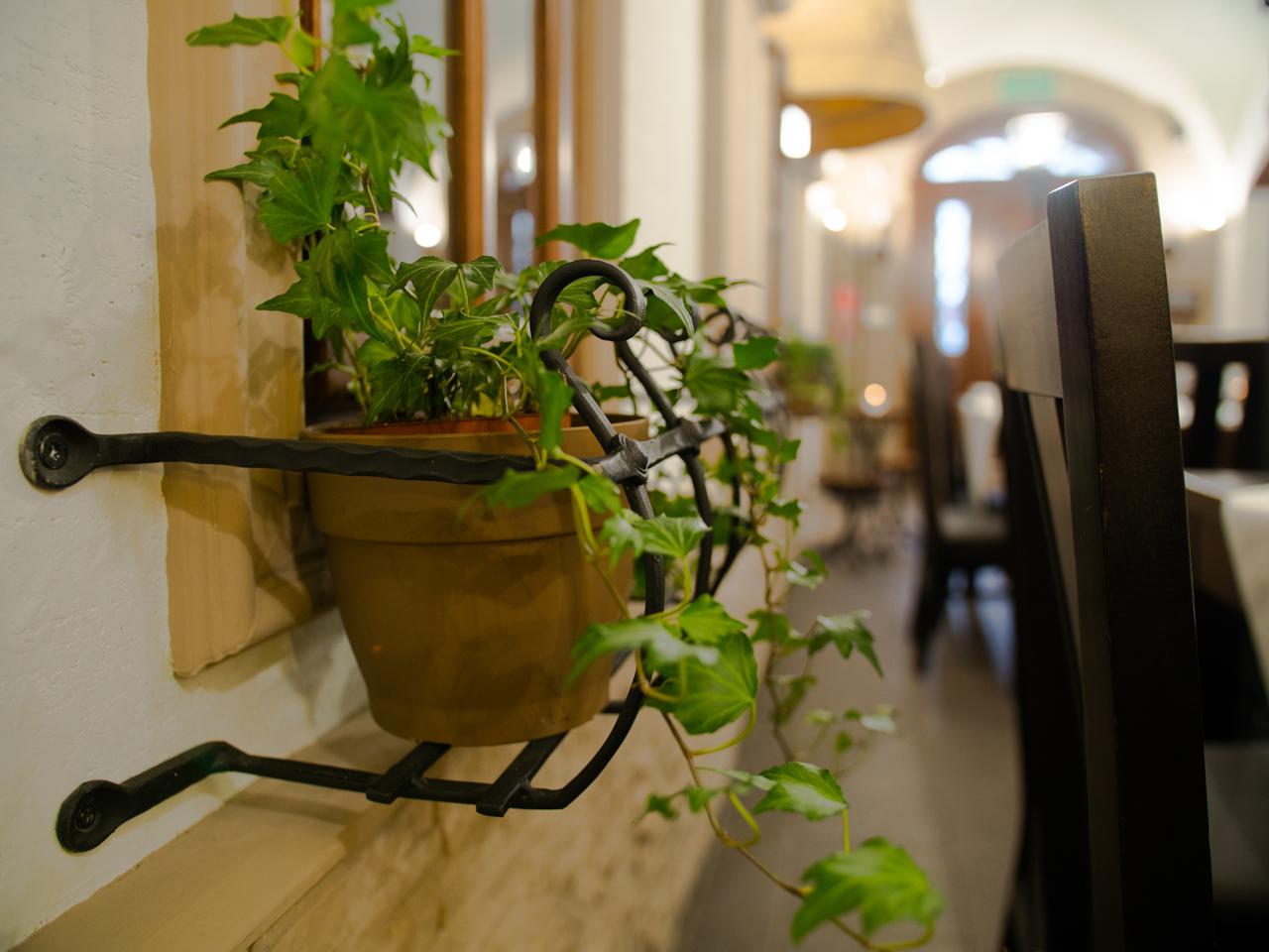 restauracja-pizzeria-coffee-street-gryfow-slaski-15